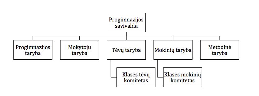 savivaldos shema
